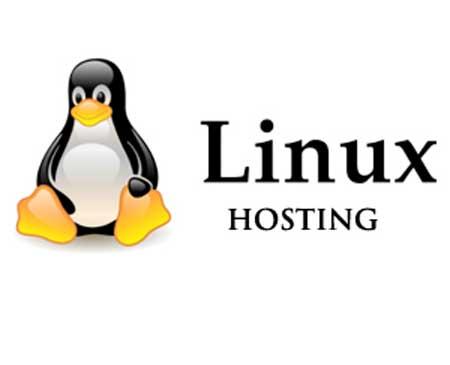 Mengenal Apa Itu Linux Hosting