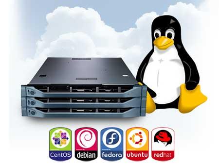 Bagaimana Cara Memilih Linux Hosting Terbaik